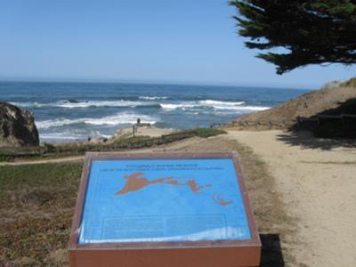 Fitzgerald marine Reserve (high tide)