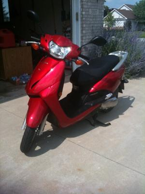 Terri's Honda Elite Scooter